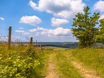 A fuga de passeio em um monte em um verão verde ajardina Fotografia de Stock Royalty Free