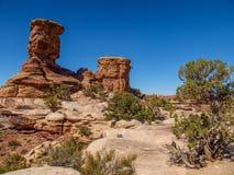 Fuga de Slickrock no parque nacional de Canyonlands fotografia de stock royalty free