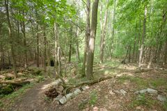 Fuga dentro de Bruce Trails Splitrock Narrows imagem de stock