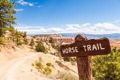Fuga do cavalo Imagens de Stock Royalty Free