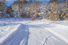 Fuga do esqui do país transversal foto de stock