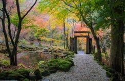 Fuga do jardim Fotografia de Stock