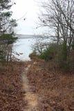 Fuga do lago Foto de Stock Royalty Free