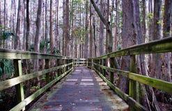 Fuga do passeio à beira mar de Florida Imagem de Stock Royalty Free