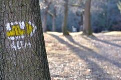 Fuga do turista com sinal amarelo na árvore Foto de Stock Royalty Free