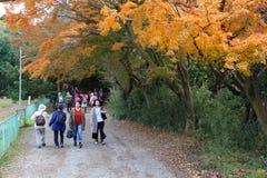 Fuga do turista de Kamakura Fotografia de Stock Royalty Free
