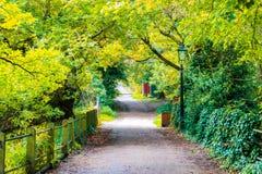 Fuga em Hampstead Heath de Londres foto de stock royalty free