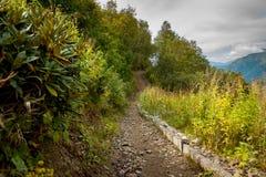 Fuga nas montanhas Fotos de Stock Royalty Free