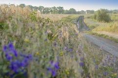 Fuga para caminhar e Biking Foto de Stock Royalty Free