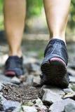 Fuga que anda nas montanhas Foto de Stock