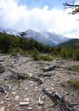 A fuga rochosa ao Patagonia de Piedras Blancas imagem de stock
