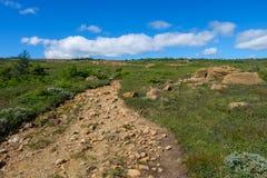 Fuga rochosa através da tundra alpina Imagem de Stock Royalty Free