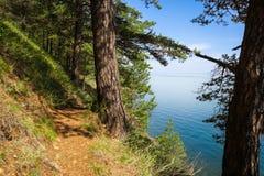 Fuga selvagem de Baikal Imagens de Stock Royalty Free