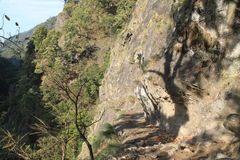Fuga Trekking de Nepal Fotografia de Stock