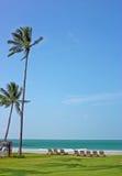 Fuga tropical fotografia de stock