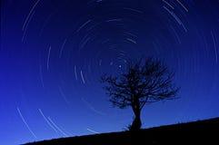 Fugas da estrela Fotografia de Stock Royalty Free