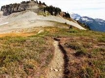 Fugas de Ridge do lagópode dos Alpes com cores da queda Foto de Stock