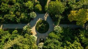 Fugas no parque, vista superior Parque em Athos novo A Abkhásia geórgia imagem de stock