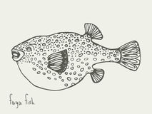 Fugu-Fische Abbildung Stockfotos
