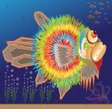 Fugu fish Stock Image