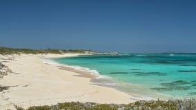 Fuite à l'île Bahamas de chat Photo libre de droits