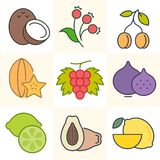 Fuits and Berries, Set of Vector Illustrations. Set of colorful cartoon fruits and berries icons. Vector illustration, isolated on white background Royalty Free Stock Photos