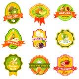 Fuits Emblem Labels set Color stock illustration
