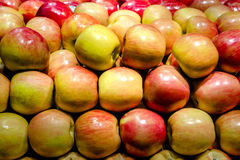 Fuji-Äpfel lizenzfreie stockfotos