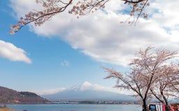 Fuji και λίμνη ΑΜ στην εποχή sakura ανθών κερασιών Στοκ φωτογραφίες με δικαίωμα ελεύθερης χρήσης