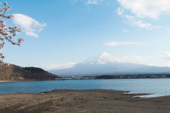 Fuji και λίμνη ΑΜ στην εποχή sakura ανθών κερασιών Στοκ Φωτογραφίες