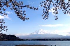 Fuji και λίμνη ΑΜ στην εποχή sakura ανθών κερασιών Στοκ Εικόνες