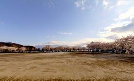 Fuji και λίμνη ΑΜ στην εποχή sakura ανθών κερασιών Στοκ φωτογραφία με δικαίωμα ελεύθερης χρήσης