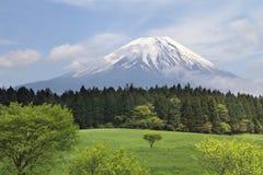 fuji япония mt стоковое фото rf