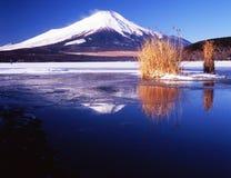 Fuji-168 стоковая фотография