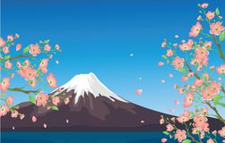 Fuji Royalty Free Stock Image