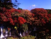 Fuji 212 mt zdjęcia stock