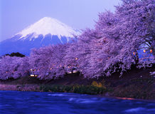 Fuji 233 mt Fotografia Stock
