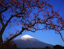Fuji 449 mt Zdjęcia Royalty Free