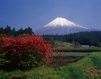 Fuji 460 mt Zdjęcie Royalty Free
