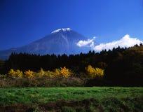 Fuji 462 mt zdjęcie stock