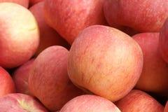 Fuji apple. The close-up of Fuji apple without fruit-stem Royalty Free Stock Photos