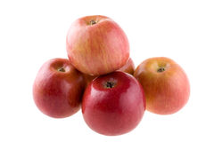 Fuji apples Stock Images