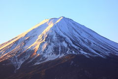fuji berg Arkivbild