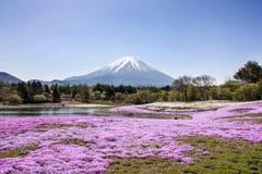 Fuji-Berg stockfoto
