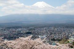 Fuji berg i Japan som bakgrund med den sakura blomningen royaltyfria foton