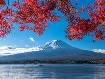 Fuji-Berg mit Rotahorn und Fischer auf Boot im See Lizenzfreies Stockfoto