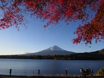 Fuji-Berg mit Rotahornblatt und Tourismus auf Boot im See Lizenzfreie Stockbilder