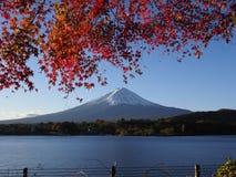 Fuji-Berg mit Rotahornblatt und Tourismus auf Boot im See Stockbild