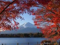 Fuji-Berg mit Rotahornblatt und Tourismus auf Boot im See Lizenzfreie Stockfotos
