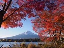 Fuji-Berg mit Rotahornblatt und Tourismus auf Boot im See Stockfotos